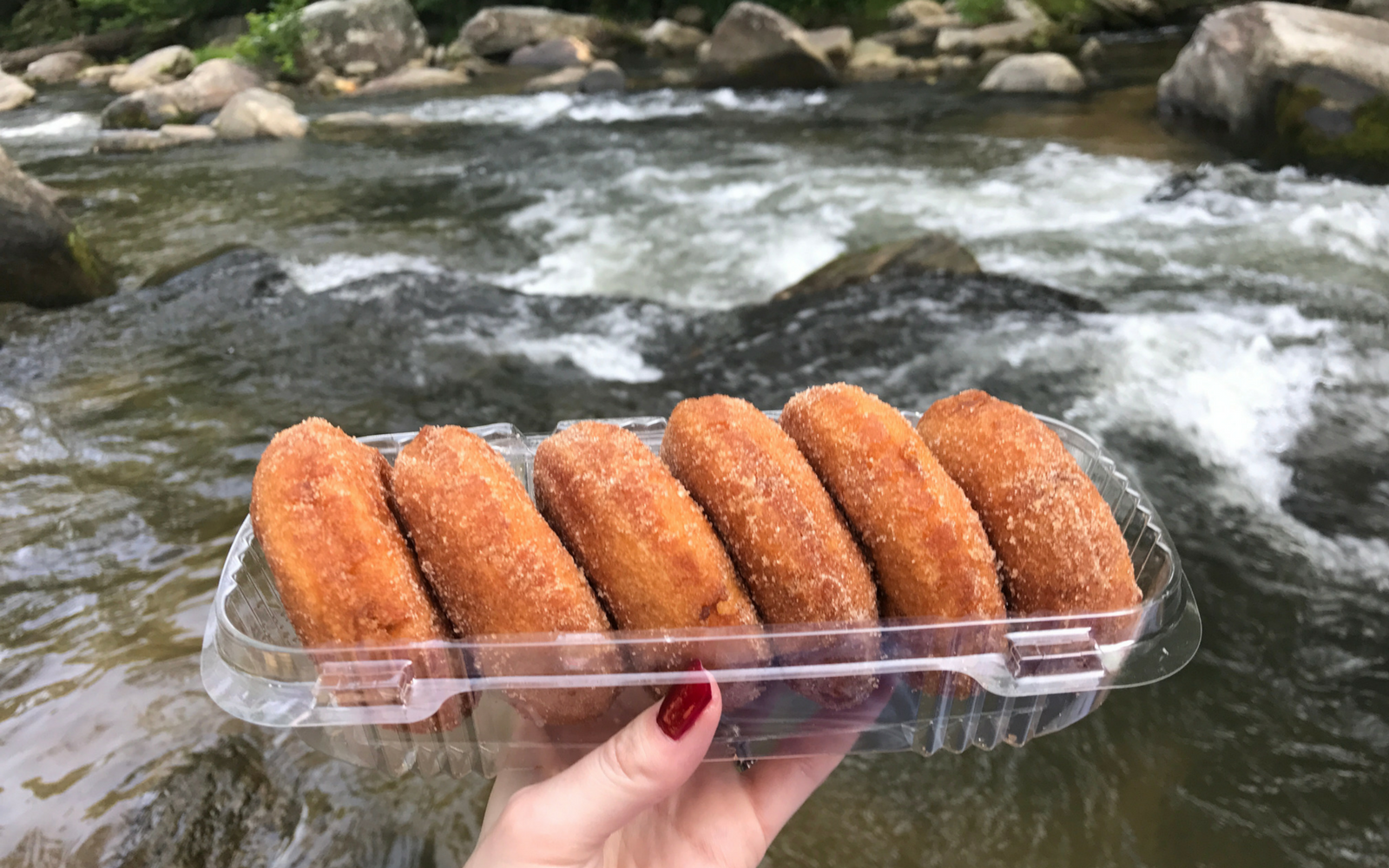 48 Hours of Food in the Blue Ridge Mountains: Finds from the Apple Festival, Vegan Festival, & More