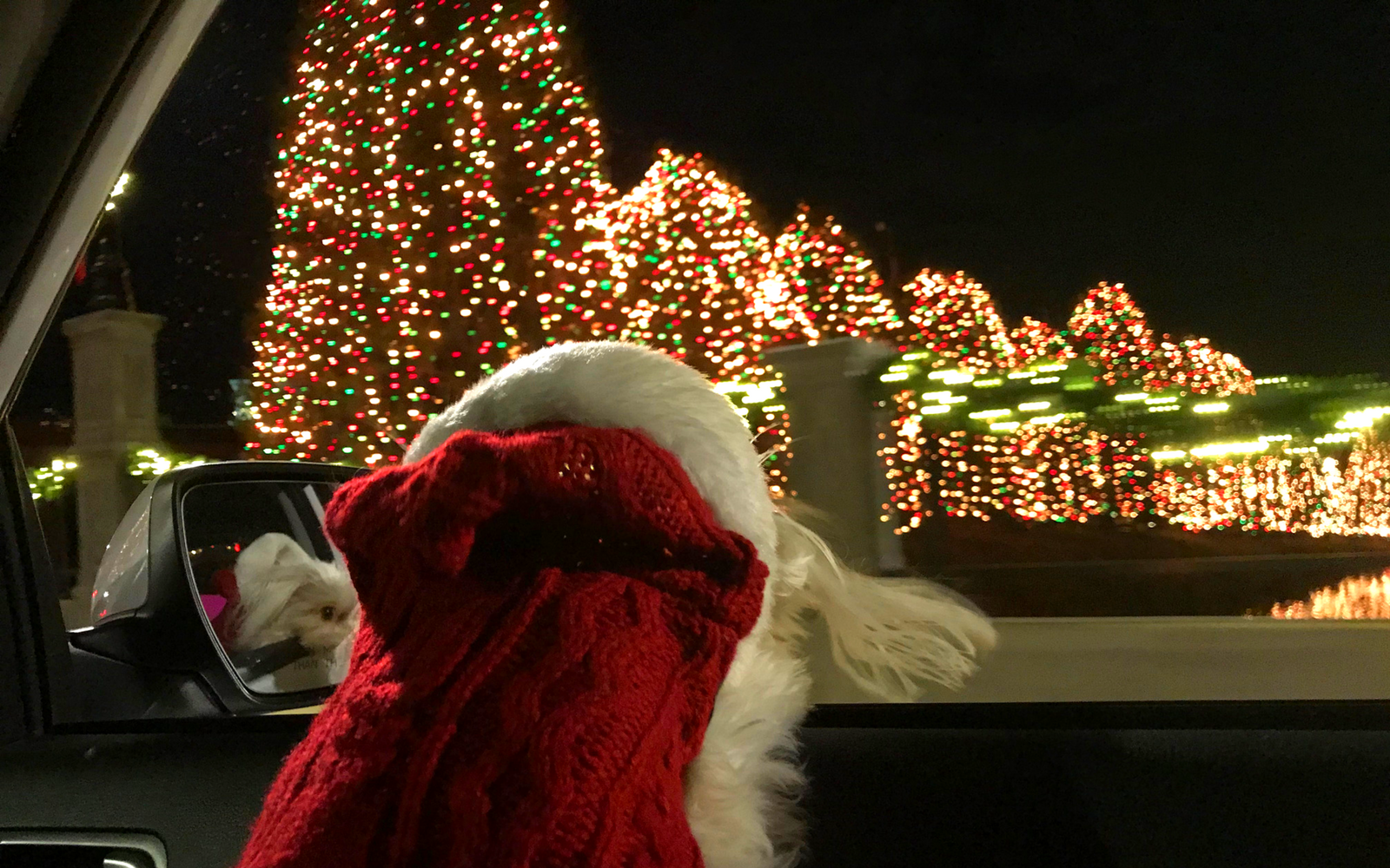 Light Up Your Christmas Spirit in Christmas Town USA