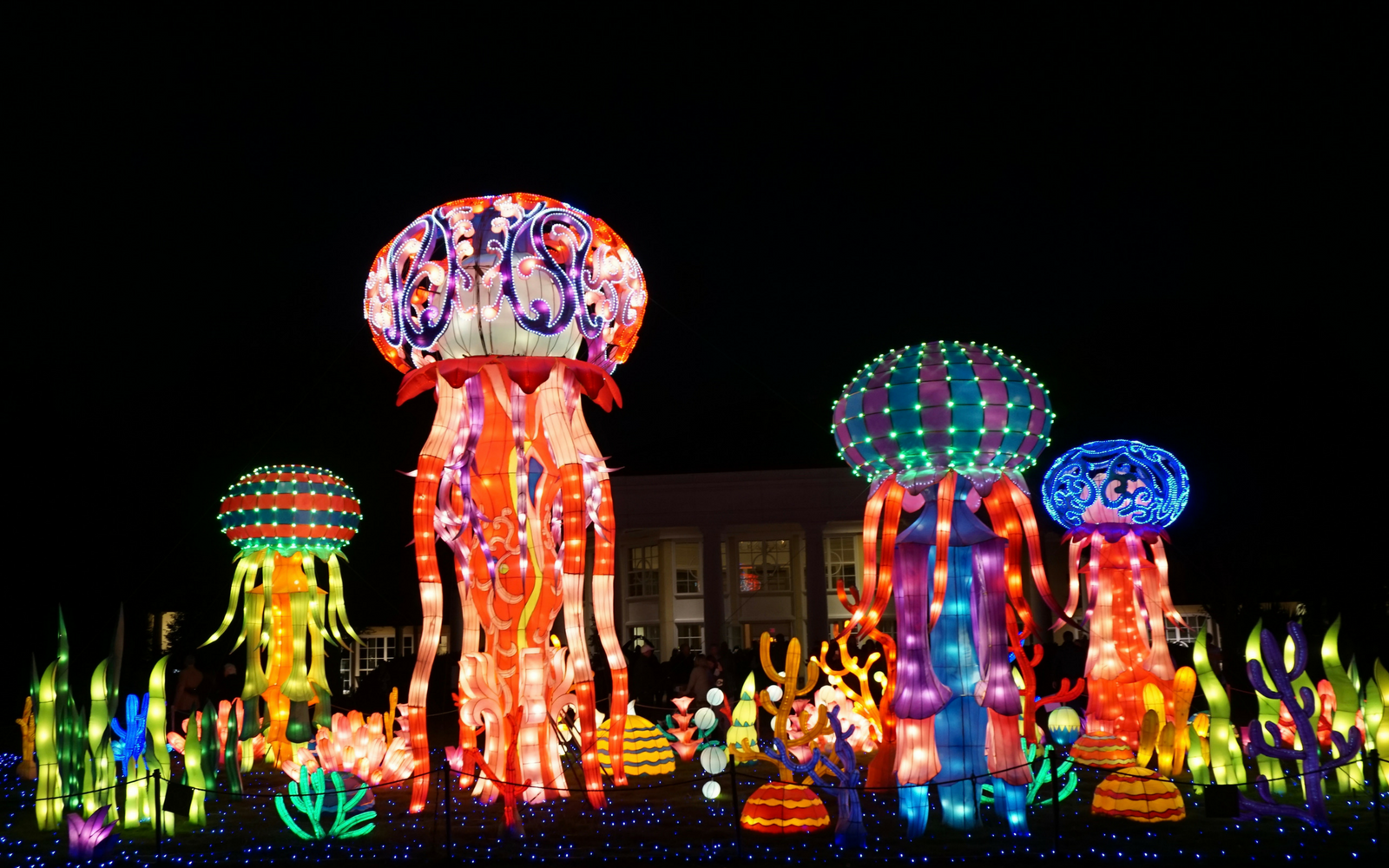 Daniel Stowe Botanical Garden Hosted An Amazing Chinese Lantern Festival